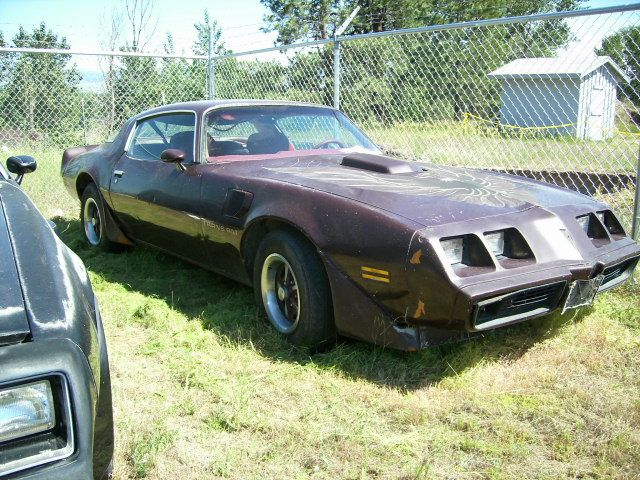 1980 Pontiac Trans Am